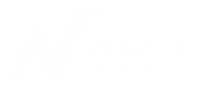 windows-chicago-newtec-windows-logo
